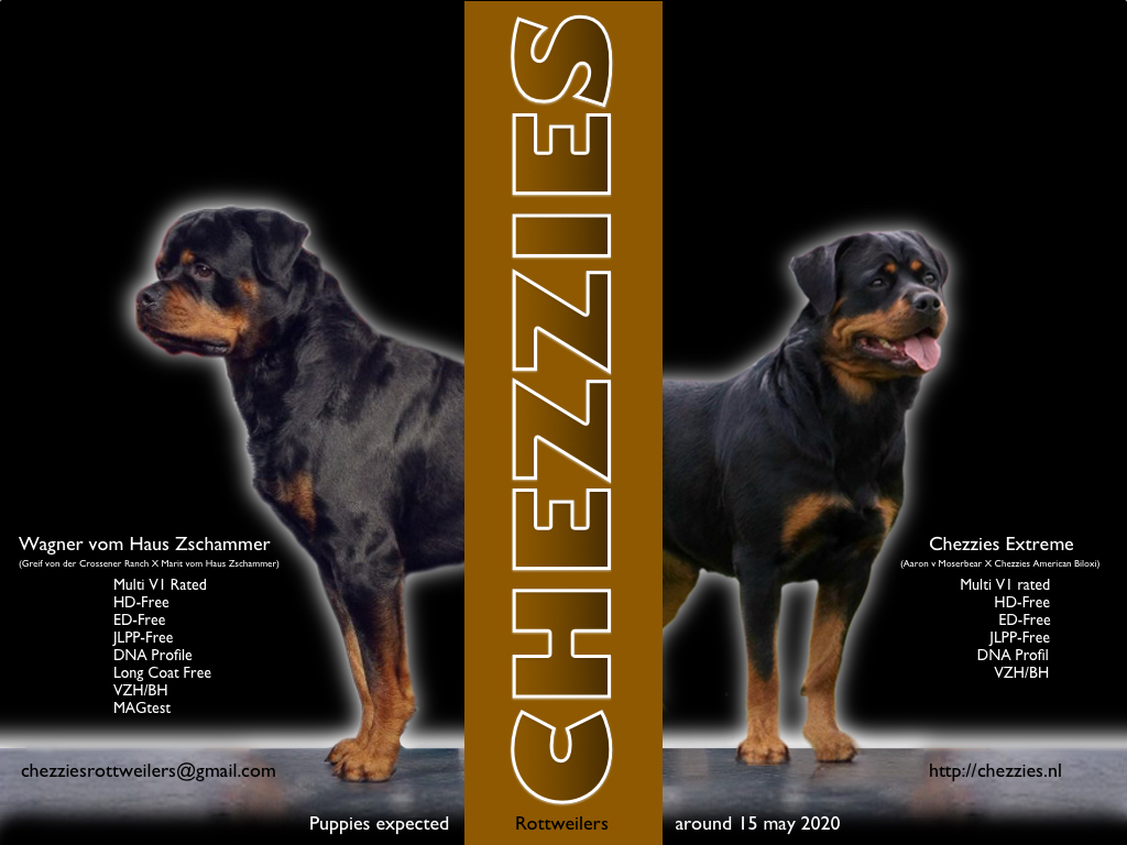 Chezzies P litter expected V1.2 (2)